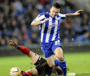 Cardiff City v Sheffield Wednesday.....Back in action for the Owls David Prutton