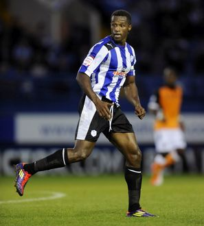 Sheffield Wednesday v Fulham 28