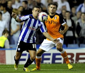 Sheffield Wednesday v Fulham 31