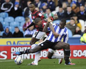 Sheffield Wednesday v Peterborough....Michail Antonio